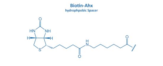 Biotin-Ahx