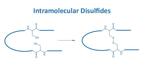 Intramolecular Disulfides
