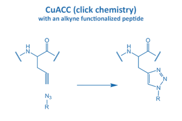 CuACC with an alkyne functionalized peptide