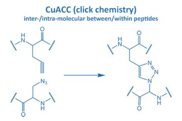 CuACC inter-/intra-molecular