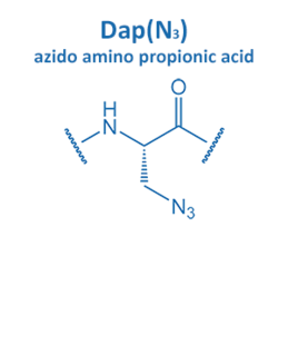 azido amino propionic acid