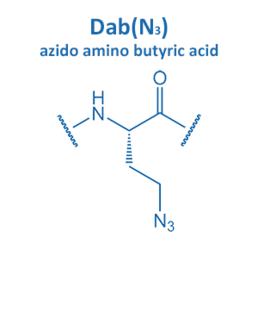azido amino butyric acid