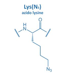 azido lysine