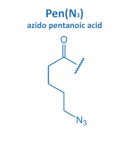azido pentanoic acid