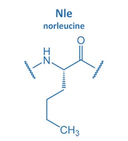 norleucine