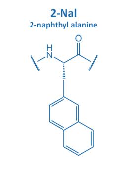 2-naphthyl alanine