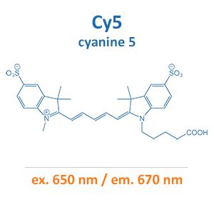 cyanine 5