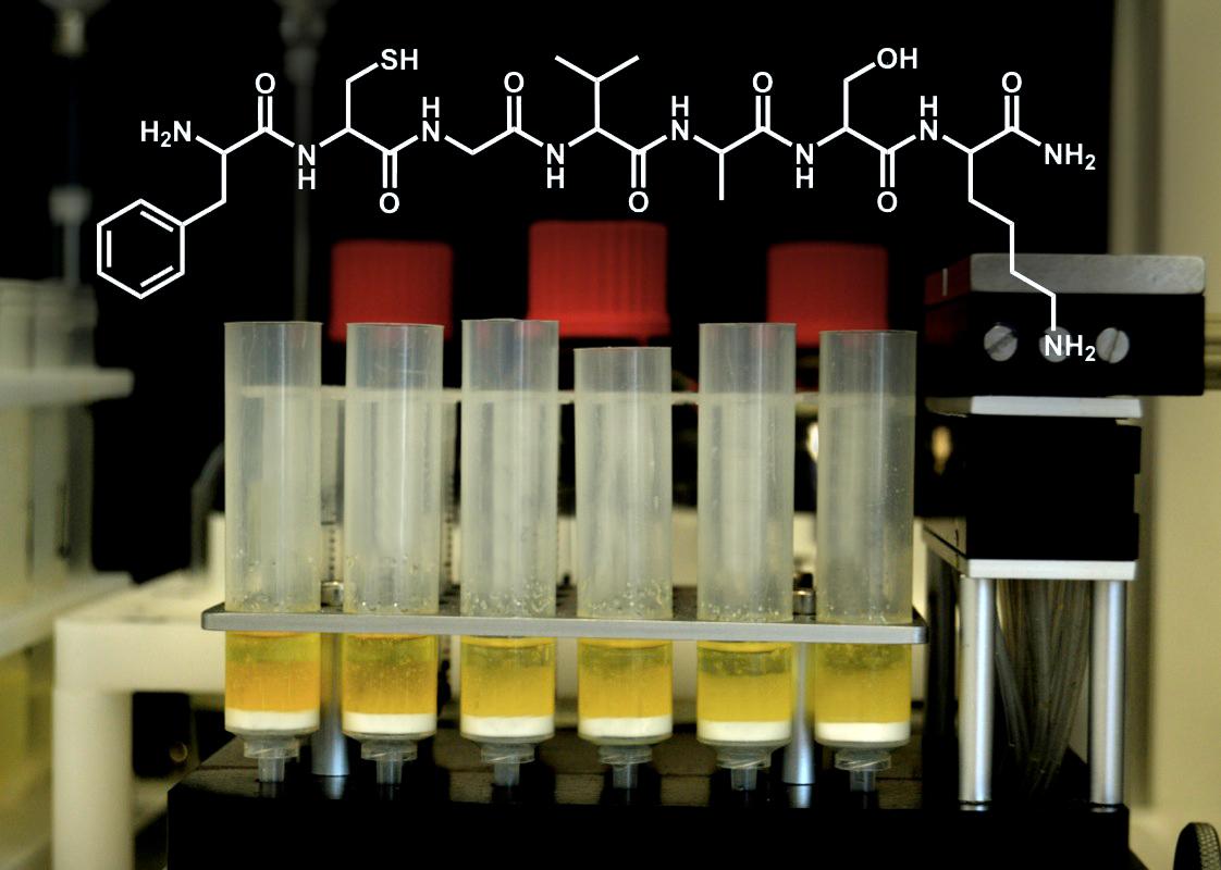 Standard Peptides