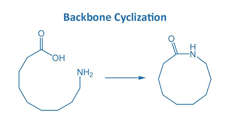 Backbone cyclization