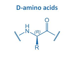 D-amino acids