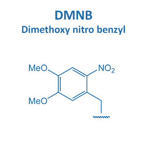 Dimethoxy nitro benzyl