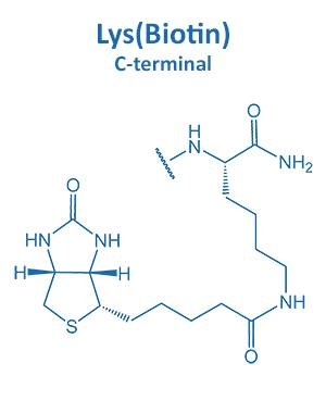 Lys(Biotin)