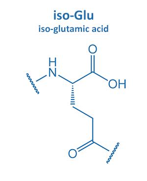 iso-glutamic acid