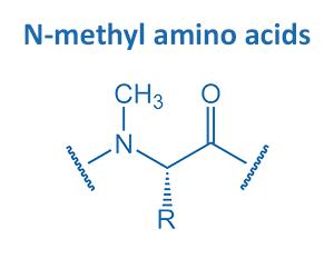 N-methyl amino acids