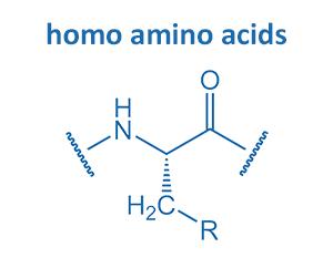 homo amino acids