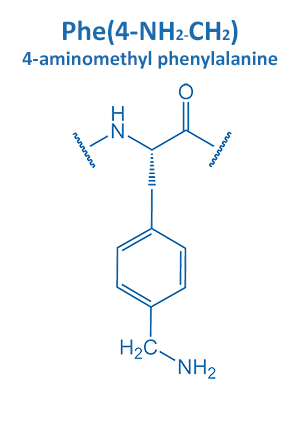 4-aminomethyl phenylalanine