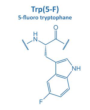5-fluoro tryptophane