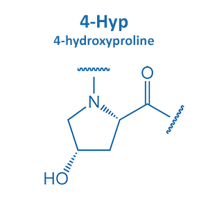 4-hydroxyproline