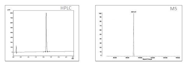 分析数据泛素-Rh110-dPro