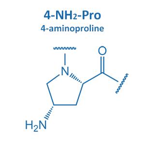 4-aminoproline